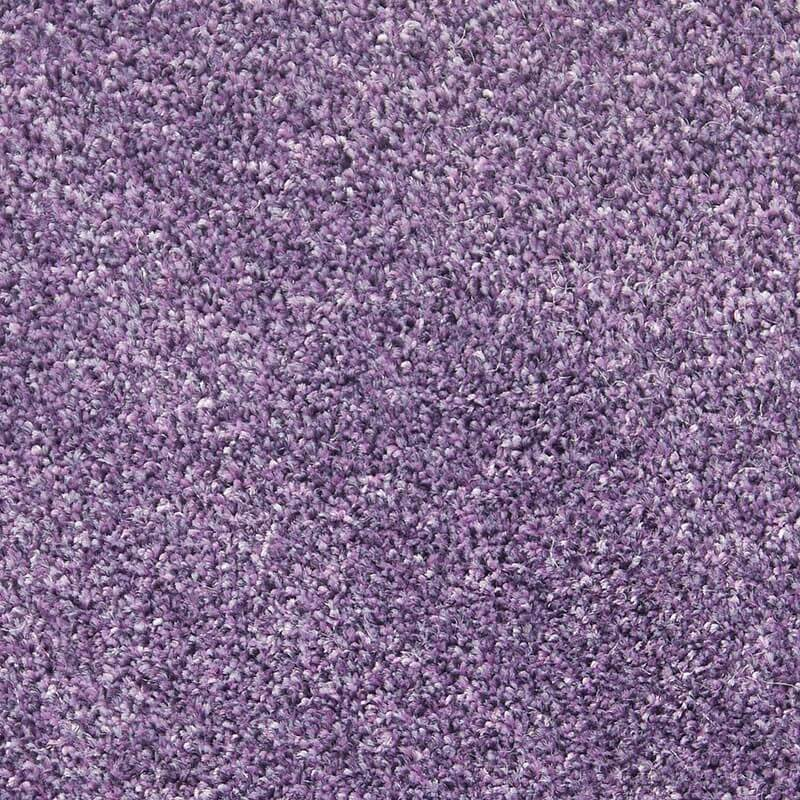 Quality Purple Carpets Cheap Rolls Brand New Carpet