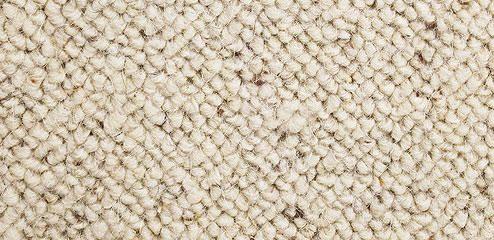 Loop Carpets