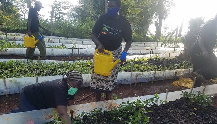 Eden Reforestion Project Kenya 4